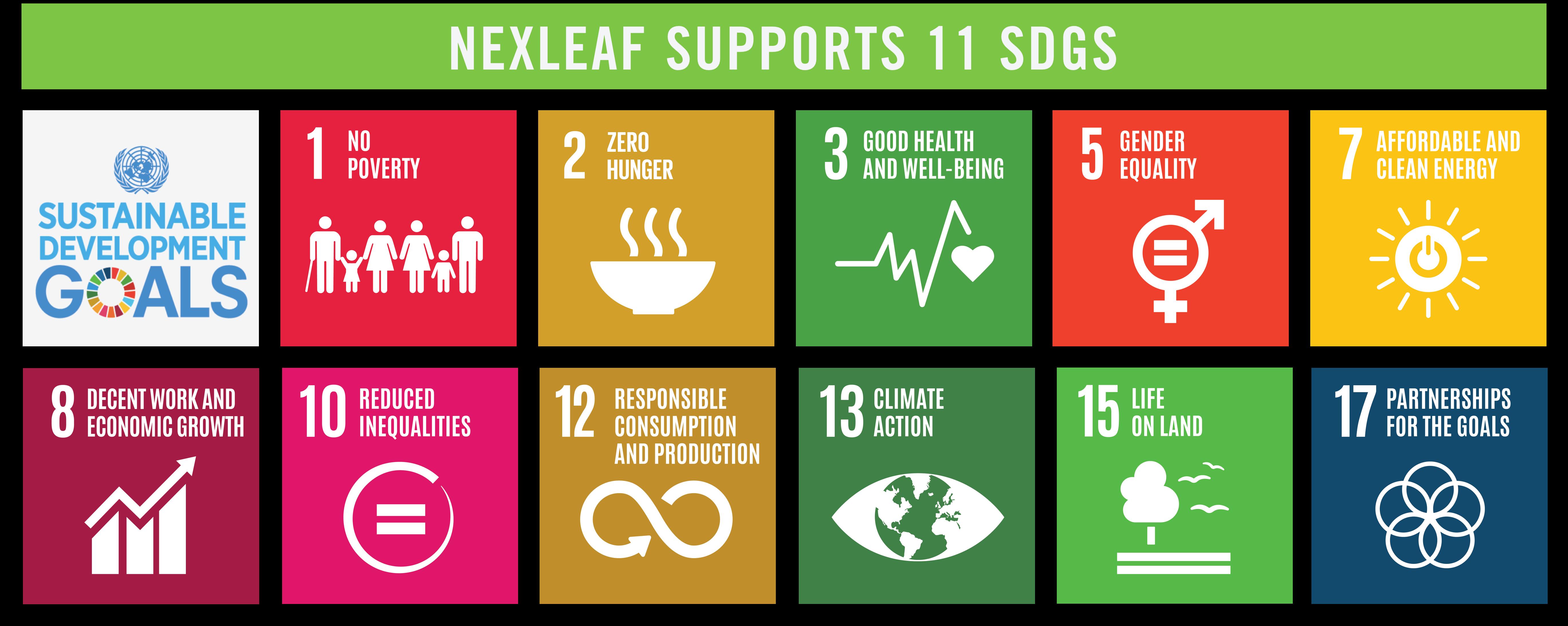 SDG_banner(green)